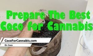 Prepare the Best Coco for Cannabis