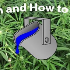 When and how to flush