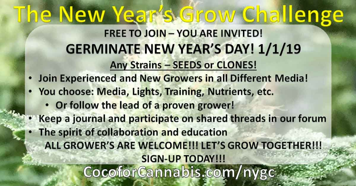New Years Grow Challenge Invitation